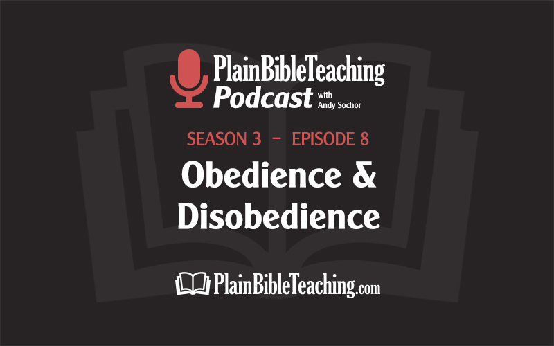 Obedience and Disobedience (Season 3, Episode 8)