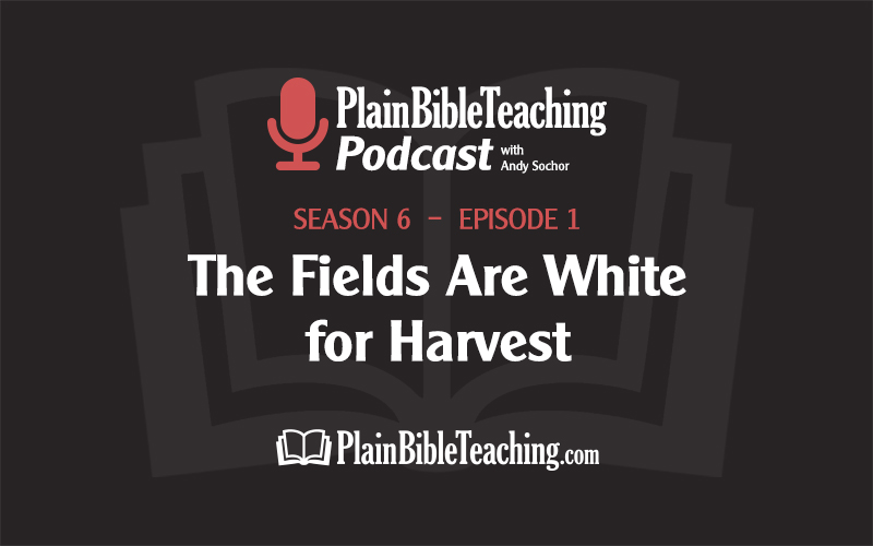 The Fields Are White for Harvest (Season 6, Episode 1)