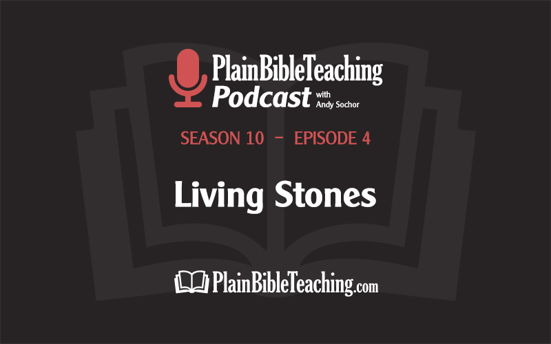 Living Stones (Season 10, Episode 4)