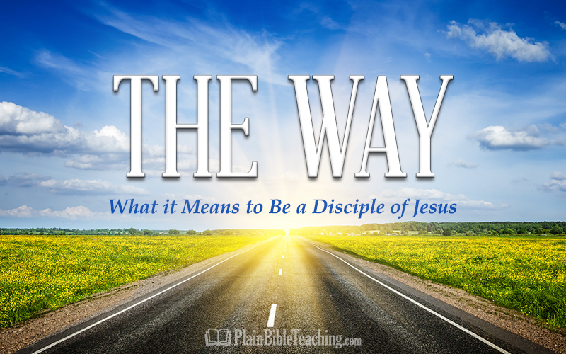 The Way: What it Means to Be a Disciple of Jesus