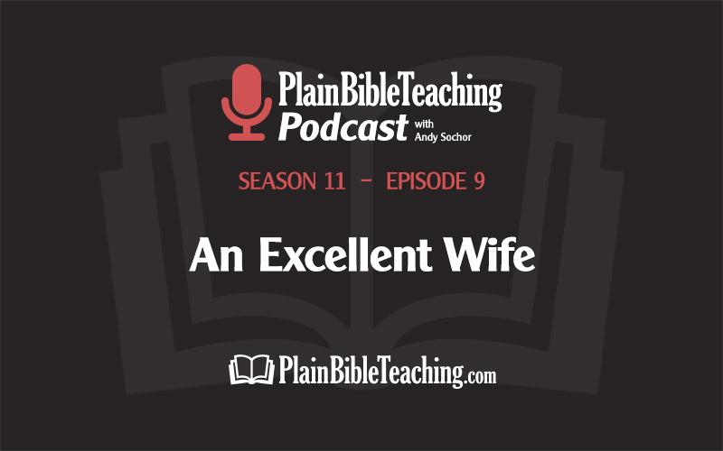 An Excellent Wife (Season 11, Episode 9)