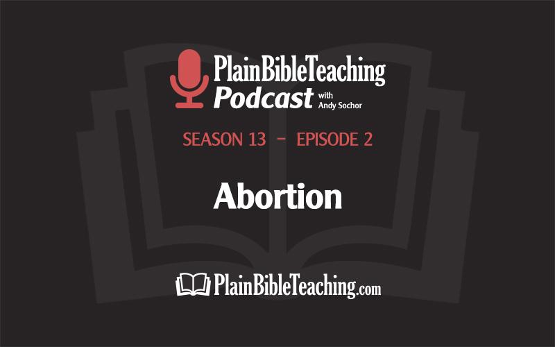 Abortion (Season 13, Episode 2)