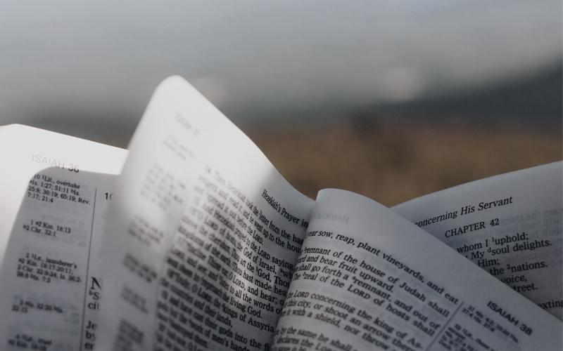 Bible open outdoors
